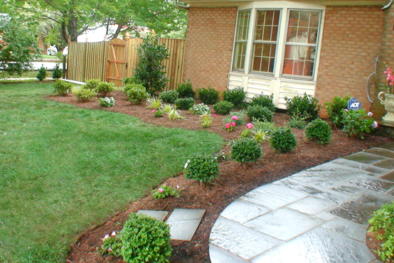 Magnificent Simple Cheap Landscaping Ideas 554 x 370 · 294 kB · jpeg